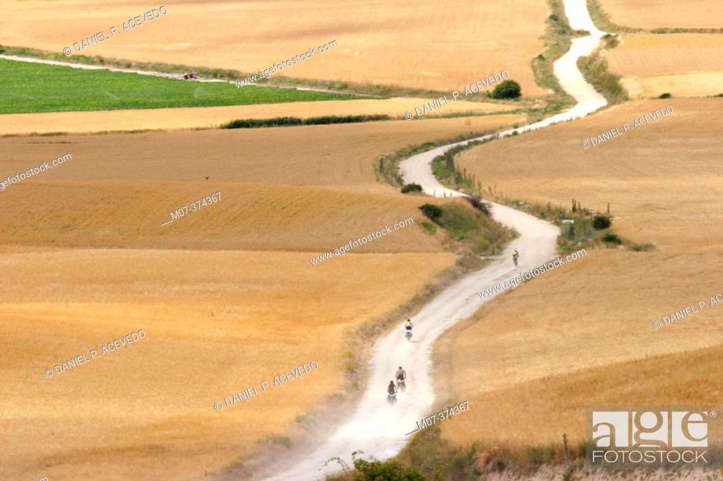 Stock Photo: Road to Santiago. Hornillos. Burgos Province. Spain.