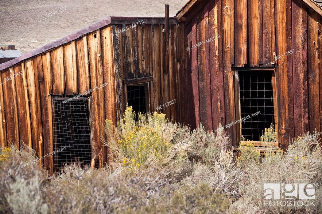 Stock Photo: Remains of a wooden home in California Gold Country.