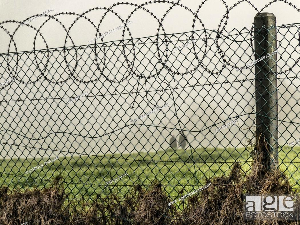 Stock Photo: The silhouutes of two people walking in the mist behind a security fence. Cape Town, South Africa.