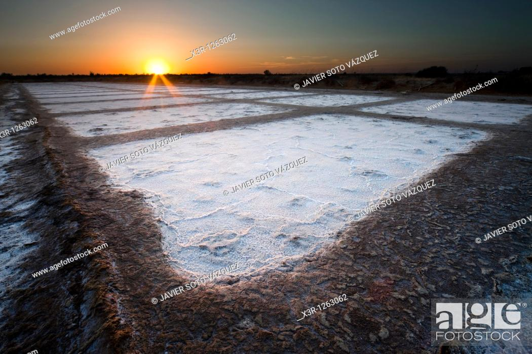 Stock Photo: Bacuta traditional salt factory, now converted is protected open space.