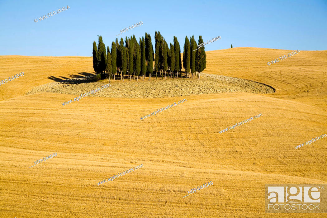 Stock Photo: Val d'Orcia. Tuscany, Italy.