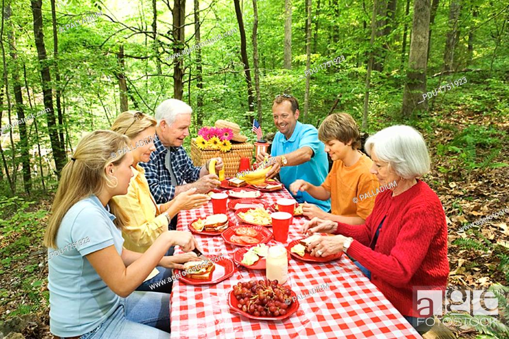 Stock Photo: Family picnic in forest.