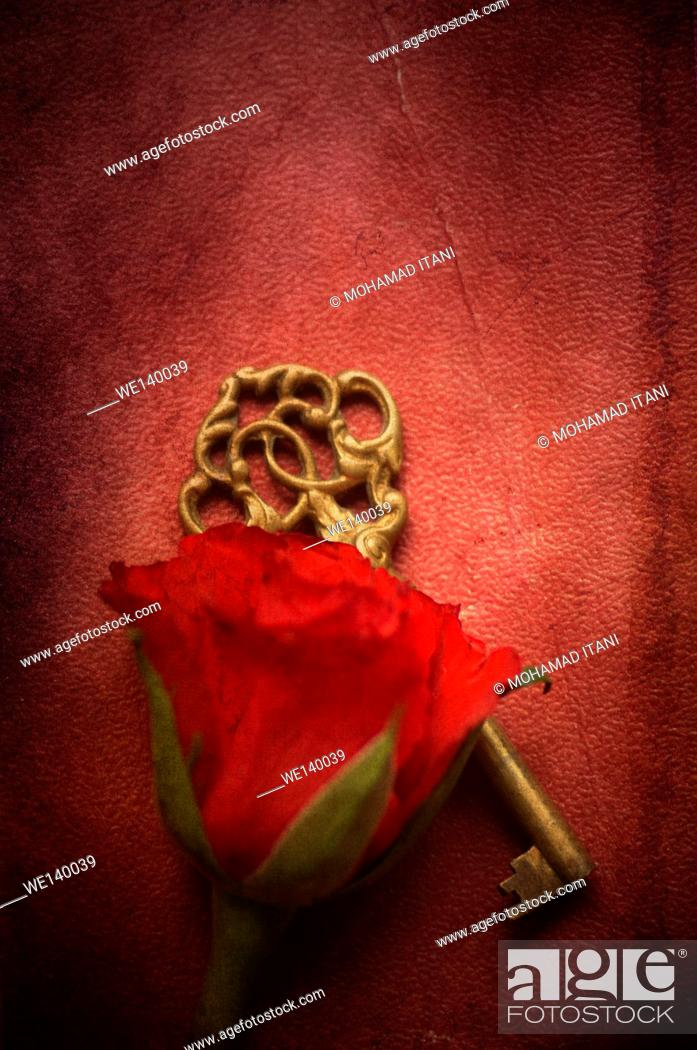 Stock Photo: Red rose and a brass skeleton key.