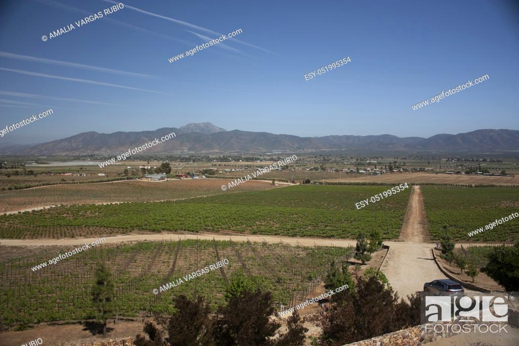 Stock Photo: Roads between mountains and vineyards in Baja California Mexico beautiful landscapes with blue sky.