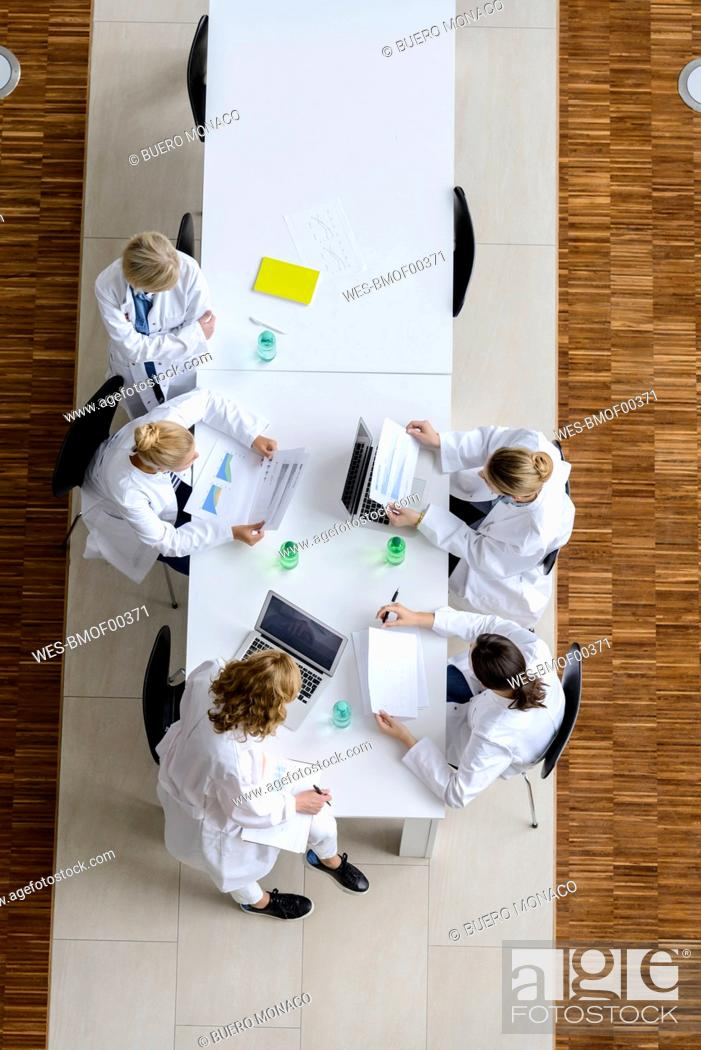 Stock Photo: Female doctors reading papers in a meeting in conference room.