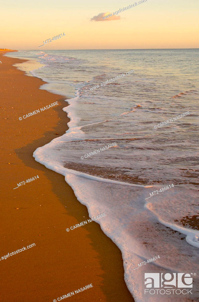 Stock Photo: Beach. Huelva province, Andalusia, Spain.