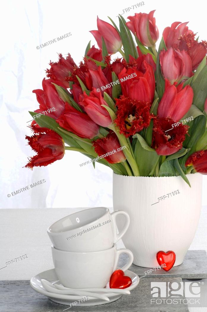 Stock Photo: Red tulips and white porcelaine.