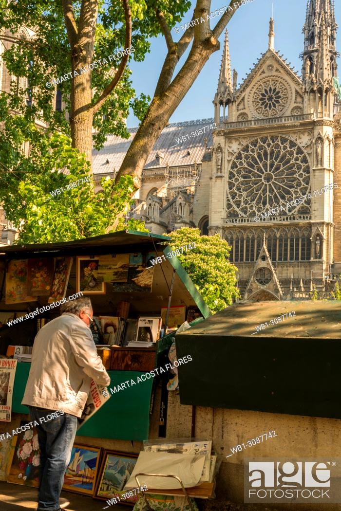 Imagen: Traditional bookseller(bouquiniste) in front of Notre Dame de Paris in a sunny day. Paris, France.