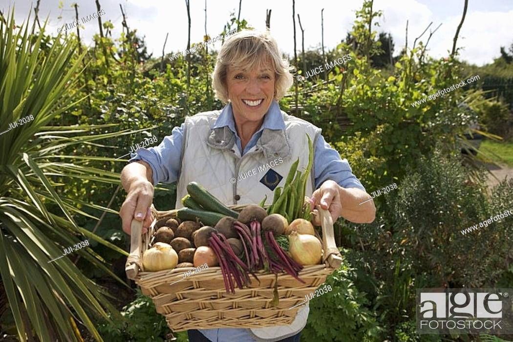 Stock Photo: Senior woman standing in garden holding fresh basket of vegetables, smiling, front view, portrait.