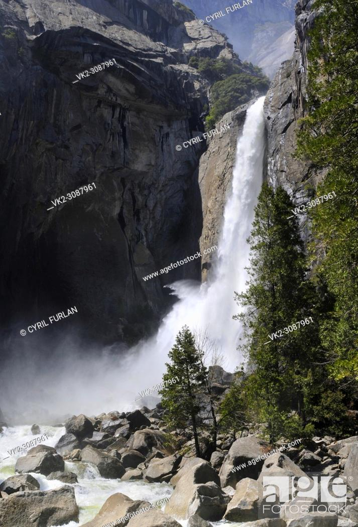 Stock Photo: Lower Yosemite Falls, Spring.