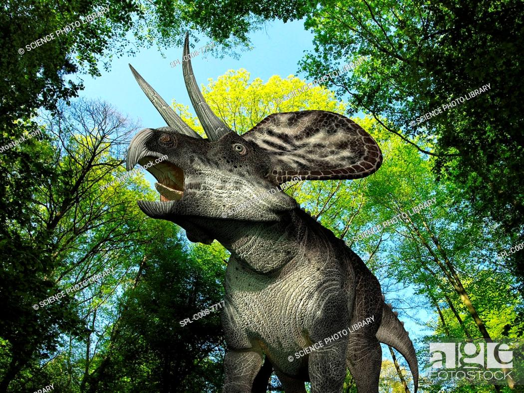 Stock Photo: Zuniceratops dinosaur. Computer artwork of a 113Kg, 10 foot 3 metres long Zuniceratops wandering in a forest during the Late Cretaceous period around 65 to 100.