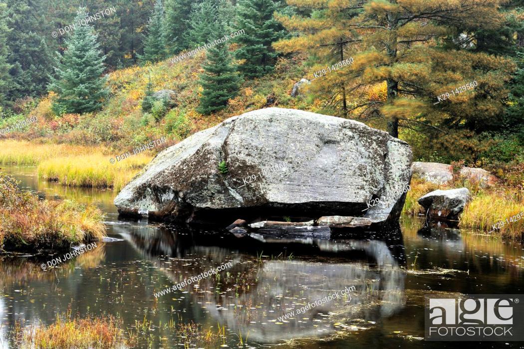 Stock Photo: Erratic boulder in Opeongo Lake marshland Algonquin Provincial Park, Ontario.