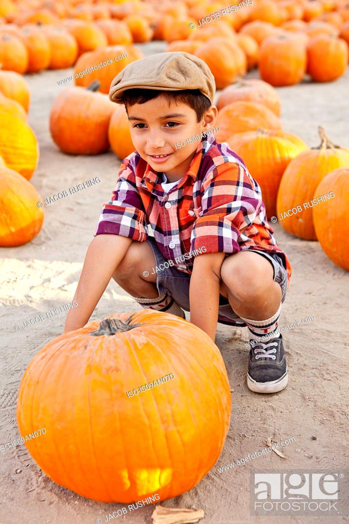 Stock Photo: Portrait of boy choosing pumpkin in farmyard.