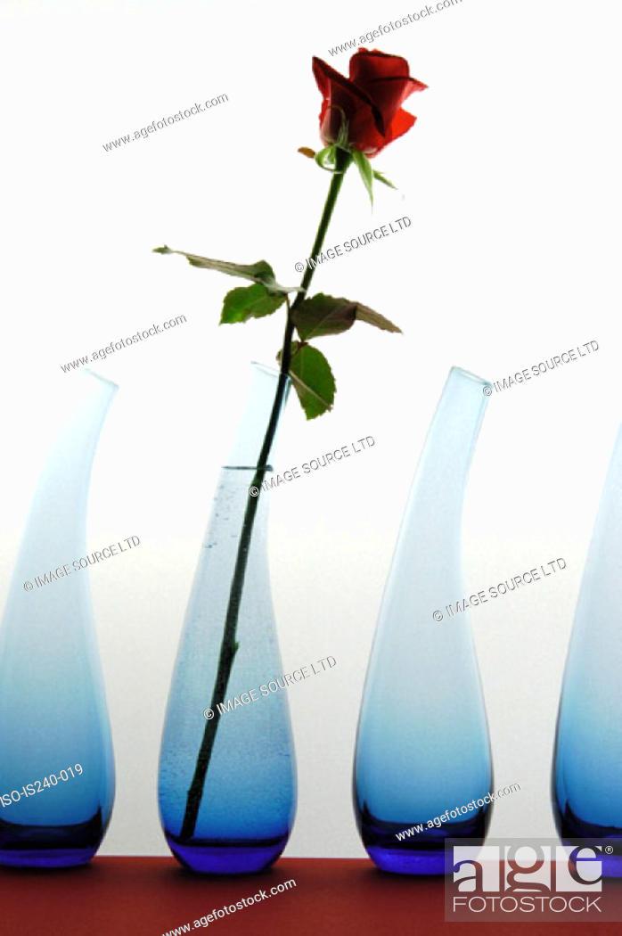 Stock Photo: Red rose in vase.