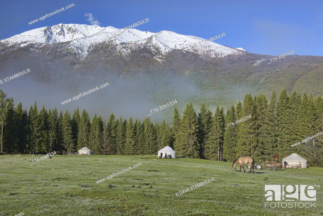 Stock Photo: Home on the range; yurts at Kanas Lake National Park, Xinjiang, China.