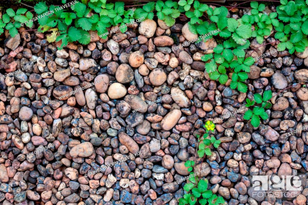 Stock Photo: Pebble stones and bricks abstract background, stock photo.