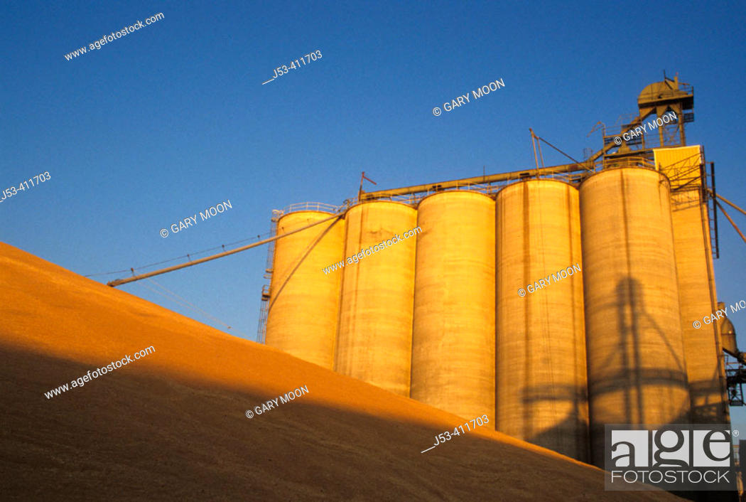 Stock Photo: Grain storage bins, USA.