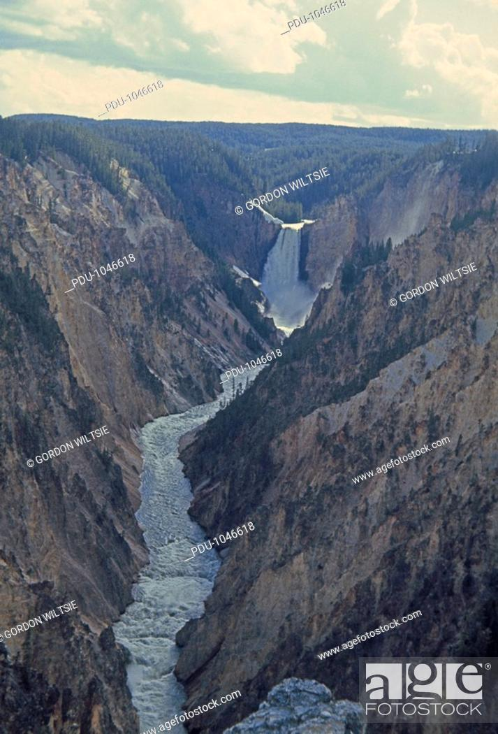 Stock Photo: Lower Yellowstone Falls pours into Grand Canyon of Yellowstone River.