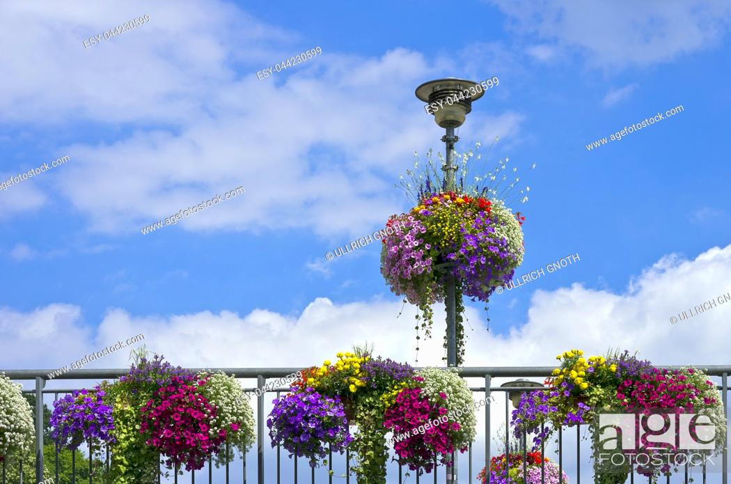 Imagen: Colourful flowers on a bridge railing and lantern, Tubingen, Baden-Wurttemberg, Germany.
