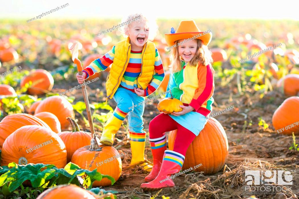 Stock Photo: Little girl and boy picking pumpkins on Halloween pumpkin patch. Children playing in field of squash. Kids pick ripe vegetables on a farm in Thanksgiving.
