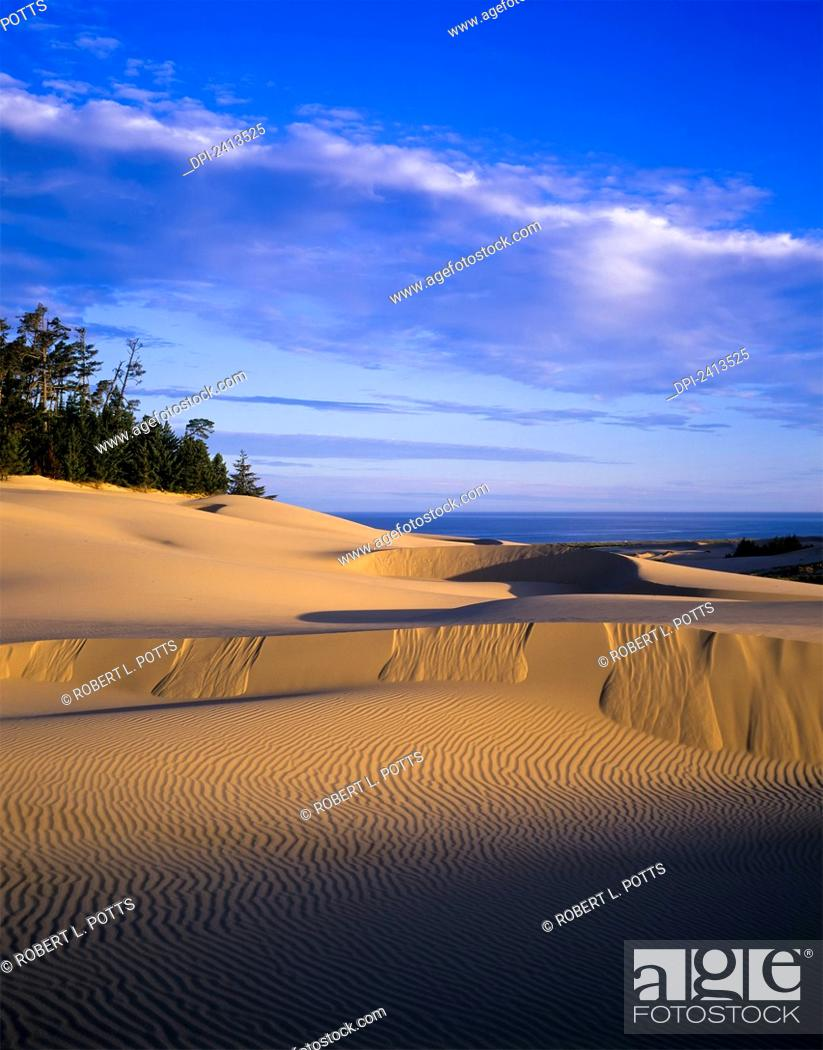 Stock Photo: Patterns in shifting sand; Lakeside, Oregon, United States of America.