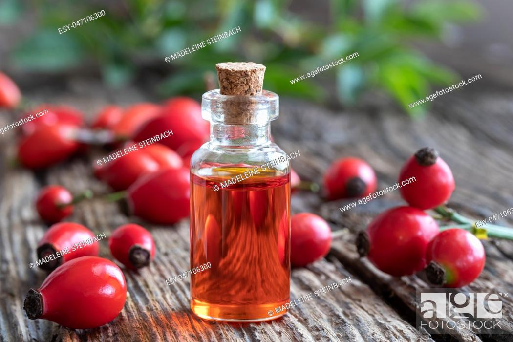 Stock Photo: A bottle of rosehip seed oil with fresh berries on a rustic background.