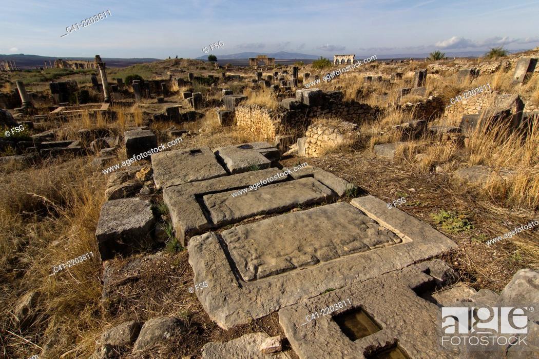 Stock Photo: Roman ruins of Volubilis. Morocco.