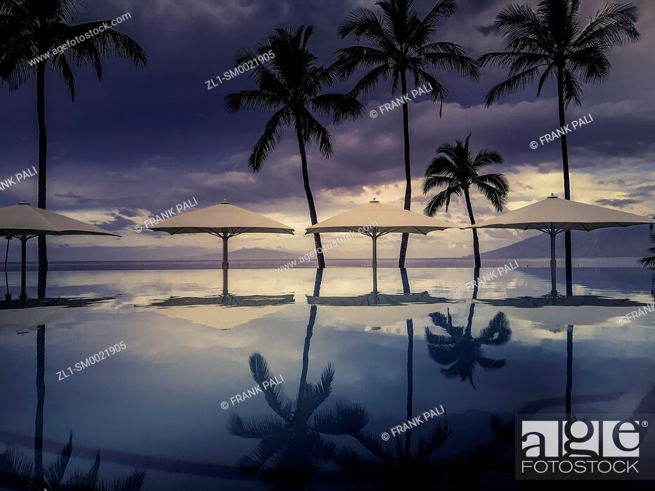 Stock Photo: Palm tree reflections in resort pool at Wailea Beach, Maui, Hawaii, United States.
