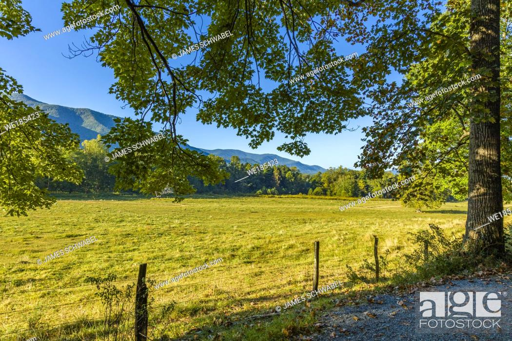 Photo de stock: Landscape of Cades Cove in the Great Smoky Mountains National Park in Tennessee in the United States.