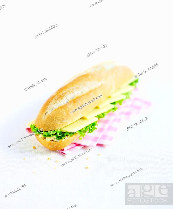 Stock Photo: Cheese sandwich with lettuce.