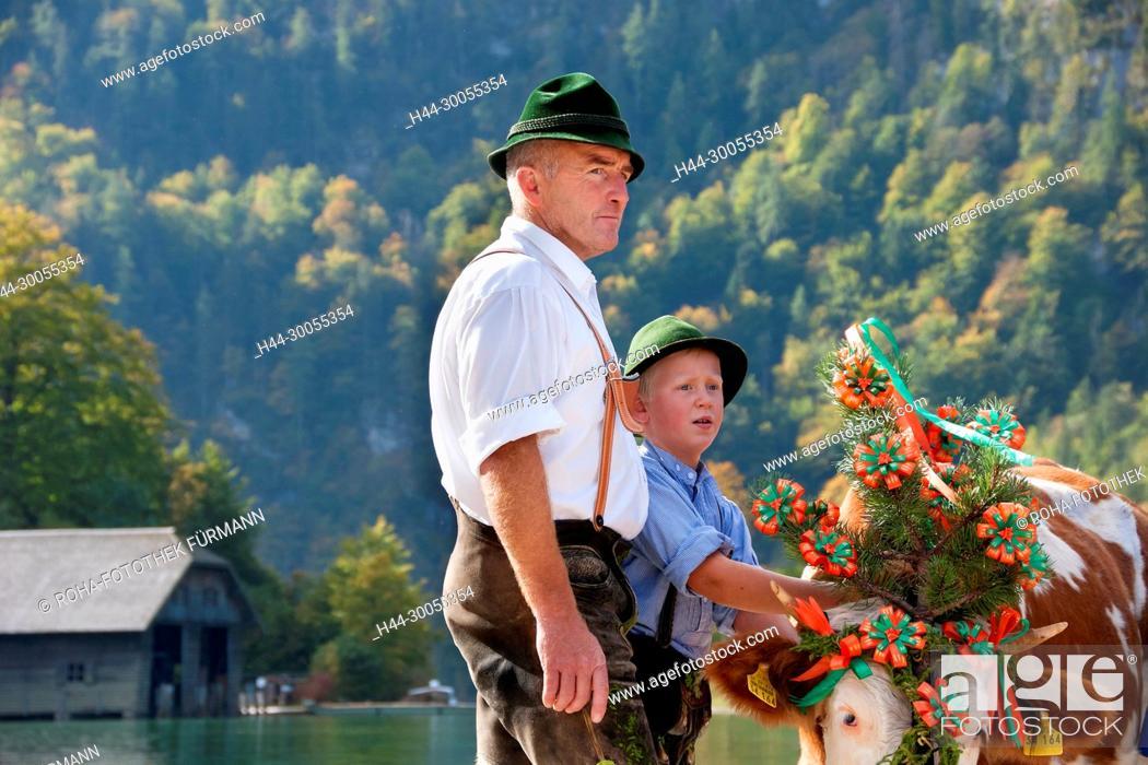 Stock Photo: Bayern, Oberbayern, Brauch, Brauchtum, Berchtesgadener Land, Königsee, Koenigsee, Koenigssee, Königssee, Brauch, Brauchtum, Alm, Almabtrieb, heruntertreiben.