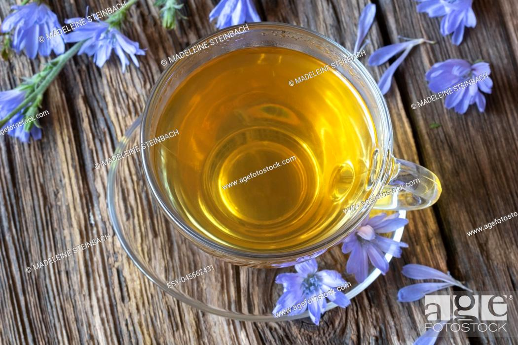 Stock Photo: A cup of chicory tea with fresh flowers, top view.