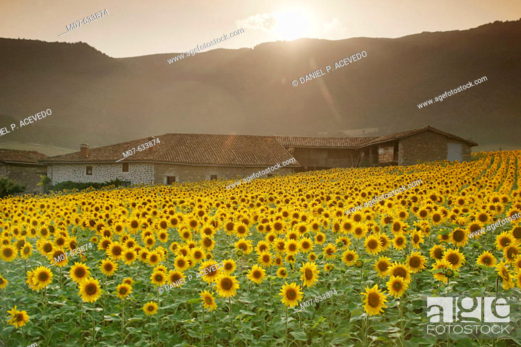 Stock Photo: Luna village in Cuartango valley. Basque country.