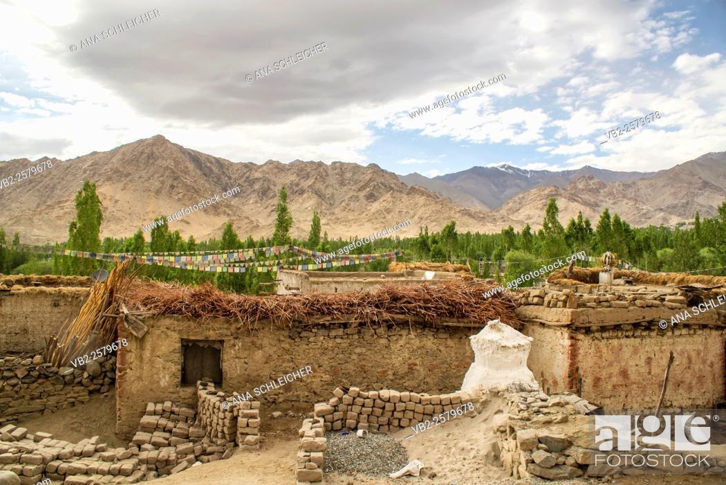 Stock Photo: Simple little mud-brick houses in Leh (Ladakh, India).