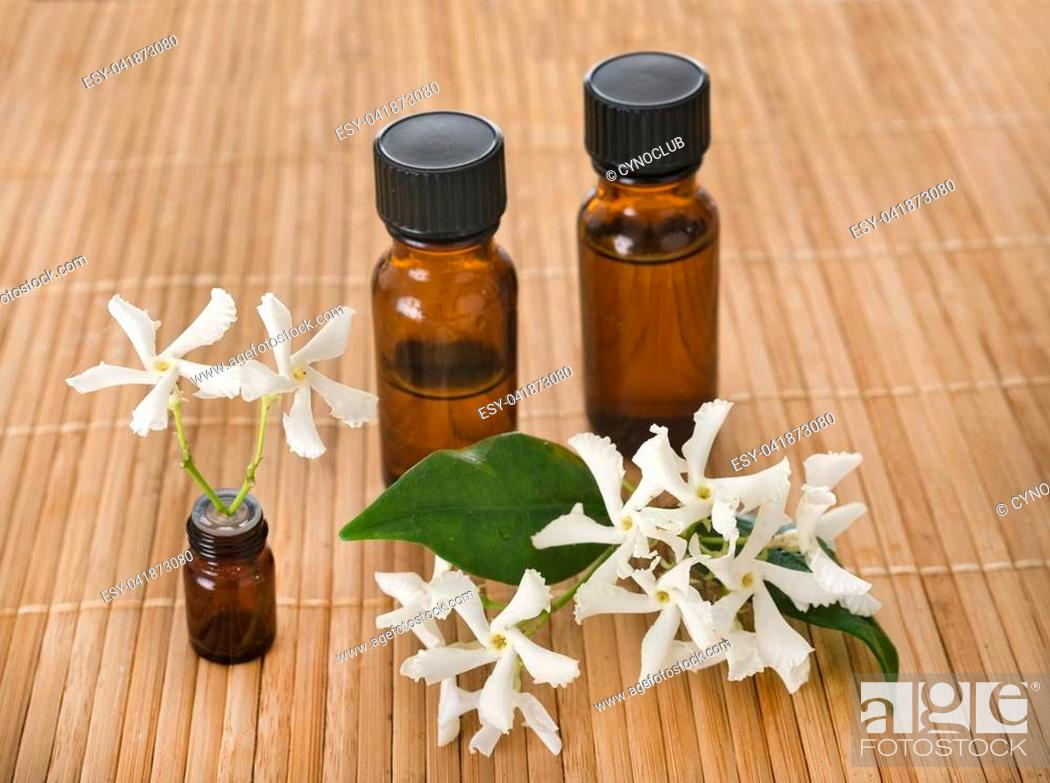 Stock Photo: essential oils in front of white background.