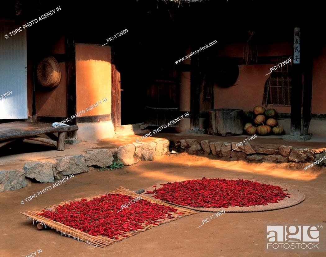 Stock Photo: Drying Red Peppers,Korea.