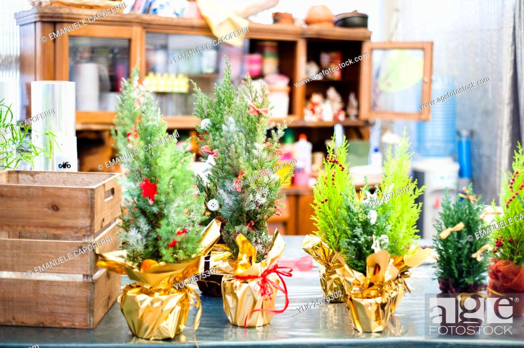 Christmas In Italy Decorations.Christmas Decorations For Sale In A Plant Nursery Lombardy