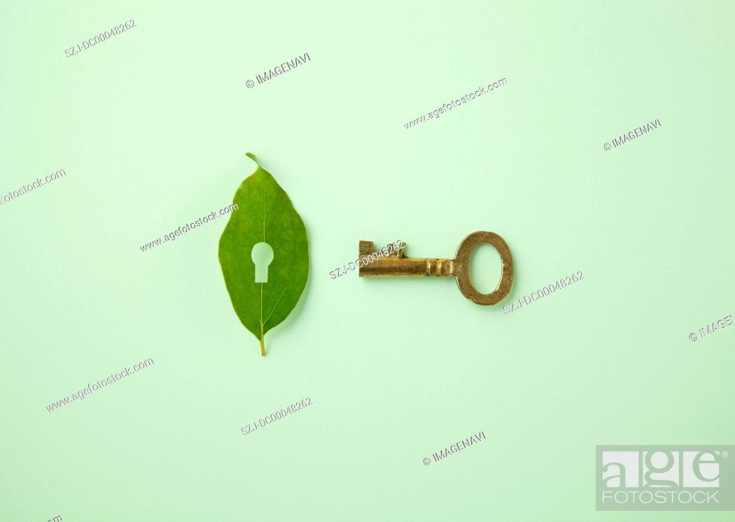 Stock Photo: Leaf with key hole and key Ecology image.