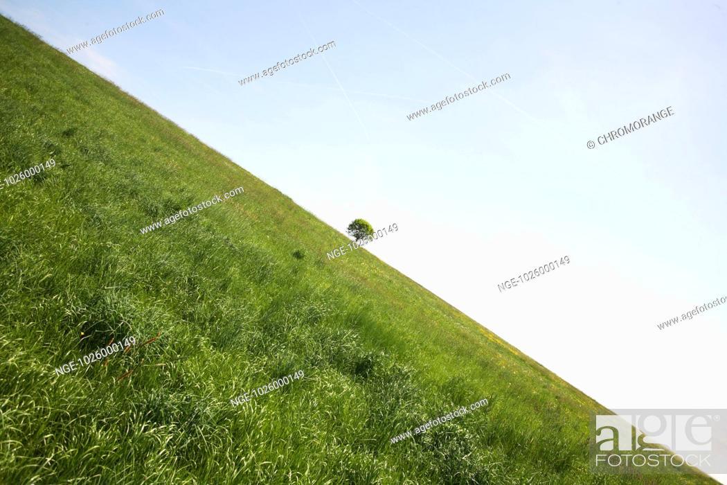 Imagen: Ecological Balance.