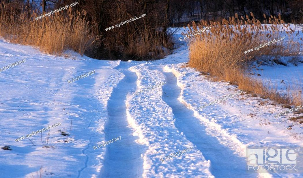 Stock Photo: Tracks in the snow.