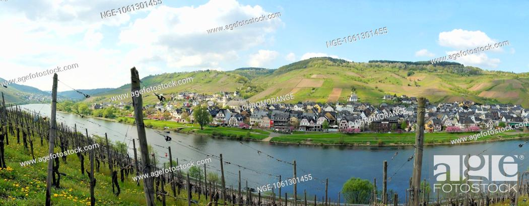 Imagen: Panorama of the Middle Moselle from Burg to Reil.