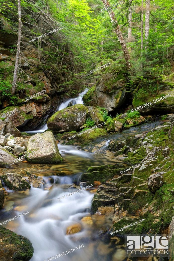 Stock Photo: Cascade along Cold Brook in Randolph, New Hampshire during the summer months. This is believed to be the lower section of the forgotten Tertia Cascade.