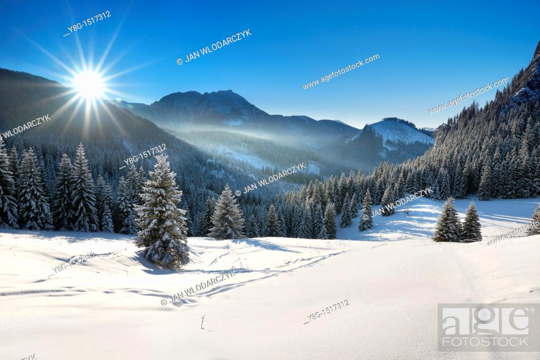 Stock Photo: Przyslup Mietusi, Tatra National Park, Poland, Europe.