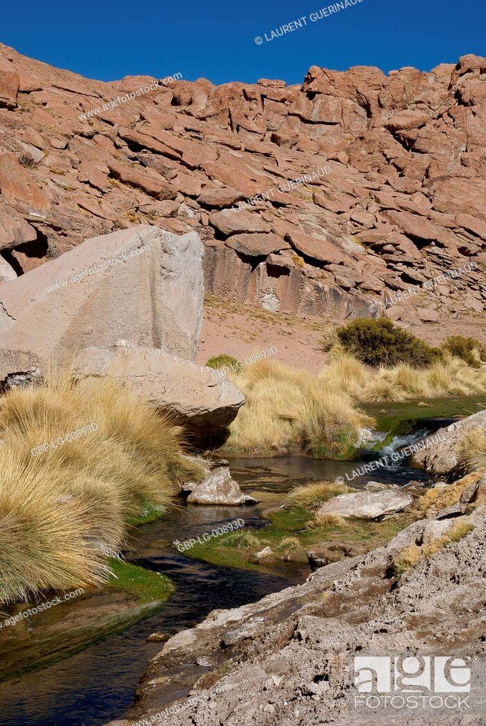 Imagen: Thermal waters, Atacama Desert, Region of Antofagasta, Santiago, Chile.