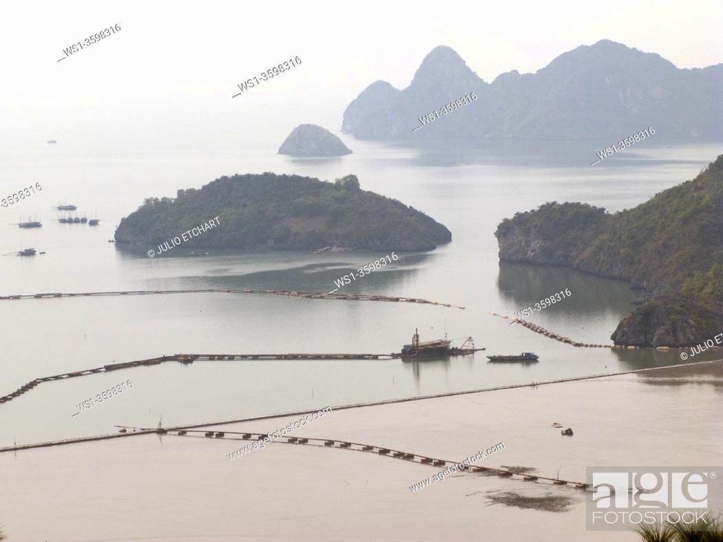 Photo de stock: TOURIST AND FISHING BOATS IN HALONG BAY, VIETNAM.