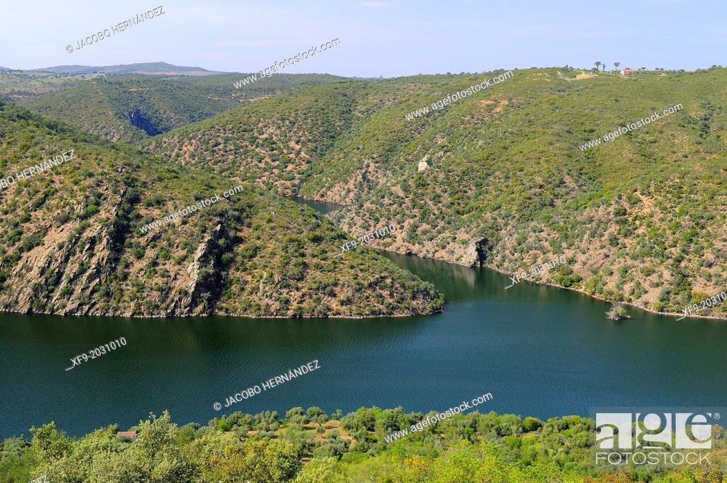 Stock Photo: Tajo Internacional Natural Park.Cáceres province.Extremadura.Spain.