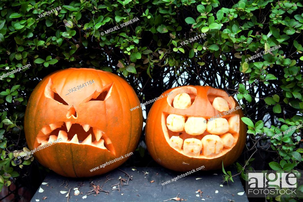 Stock Photo: Carved Pumpkins.