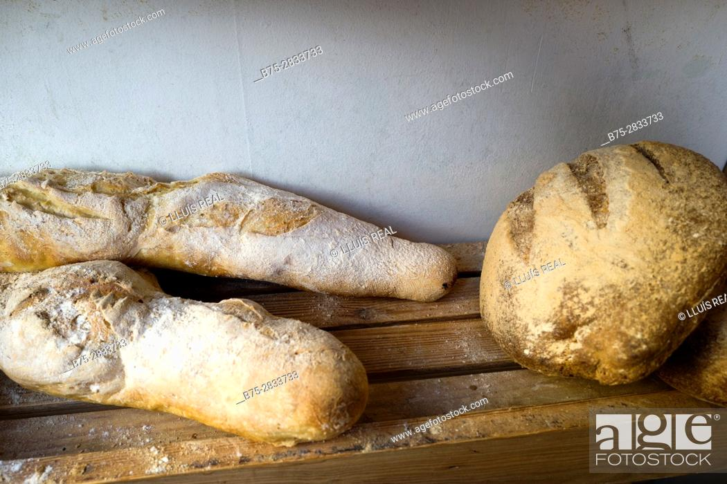 Stock Photo: Close up of three ecological breads in a bakery. Sedbergh, Cumbria, West Riding os Yorkshire, Yorkshire Dales, England, UK.