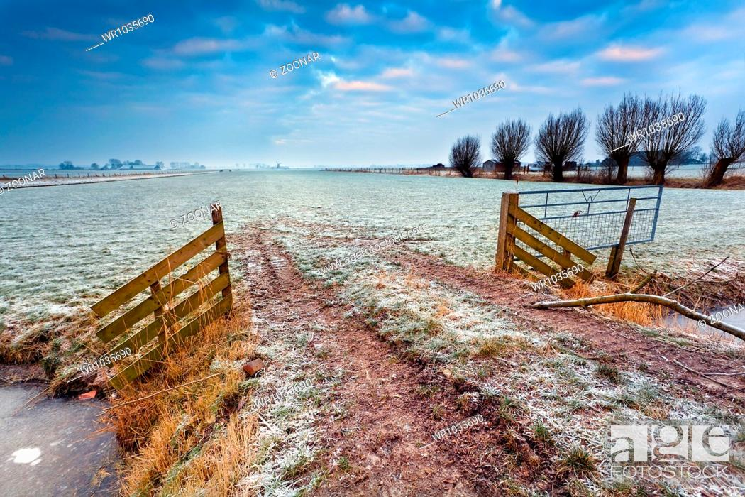 Stock Photo: wooden fence on winter pasture.