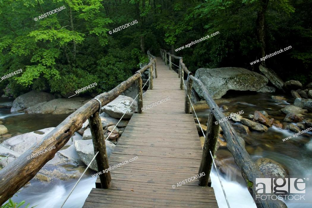 Stock Photo: Footbridge, Chimney Tops Trail, Great Smoky Mountains National Park, Tennessee.